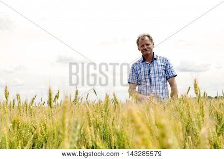 Farmer Checking Soybean Field. The Unique Technology Of Growing Crops. Farmer Sitting In The Field O