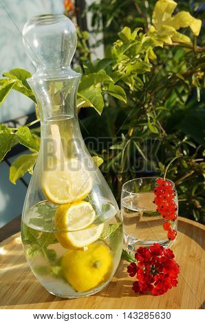 Cool lemonade in a carafe with lemon and mint on a skewer positioned on a bamboo tray. A glass of water is decorated with redcurrant and a twig of common verbena. bright green passion fruit leaves in background.