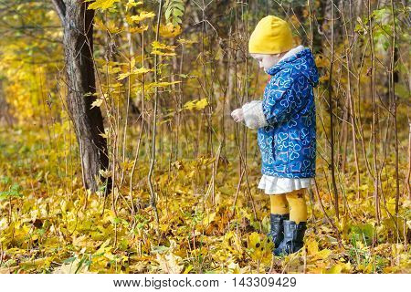 Little girl full length profile standing at bright yellow and orange autumn fallen leaves groundcover