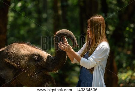 Woman touch elephant with all her heart in Thailand.