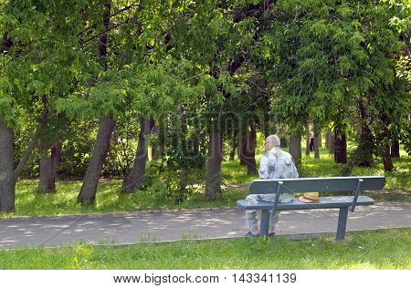 Senior gentleman sitting on the bench in park