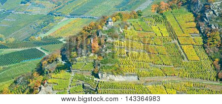 View to popular Red Wine Hiking Trail in Ahr Valley near Bad Neuenahr,Rhineland-Palatinate,Germany
