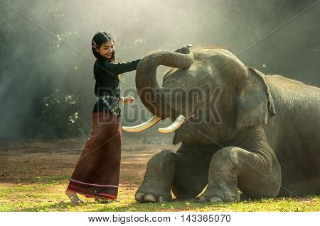 Elephant with Asian girl at Surin province, Thailand