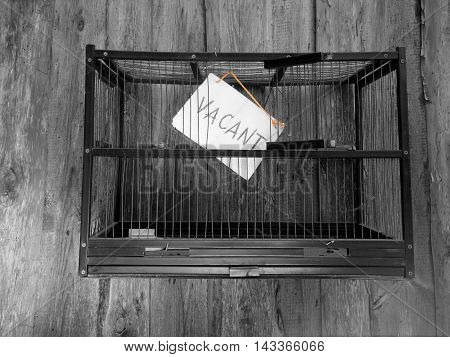 A bird cage against a wooden wall and an open door and note Vacant closeup shot with selective color