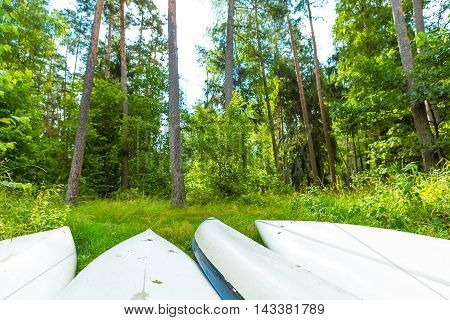 Summer Forest Landscape With Overturned Kayaks