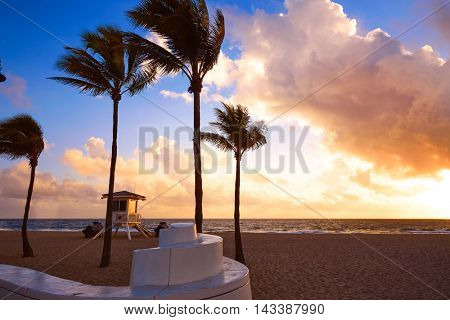 Fort Lauderdale beach morning sunrise in Florida USA palm trees
