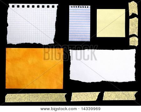 Collection of pieces of paper