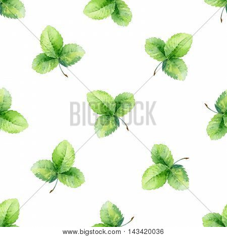 Seamless pattern with green strawberry leaf. Watercolor illustration