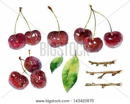 Cherries on white background. Set of elements. Watercolor illustration