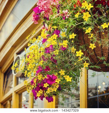 Flower decoration in English pub on street of London