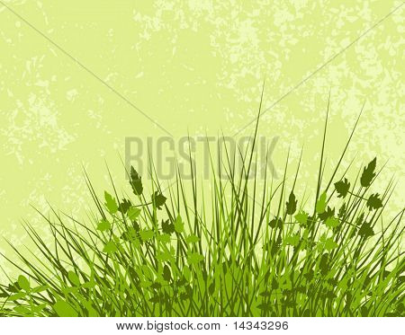 Editable vector illustration of grassy vegetation with grunge and vegetation as separate layers
