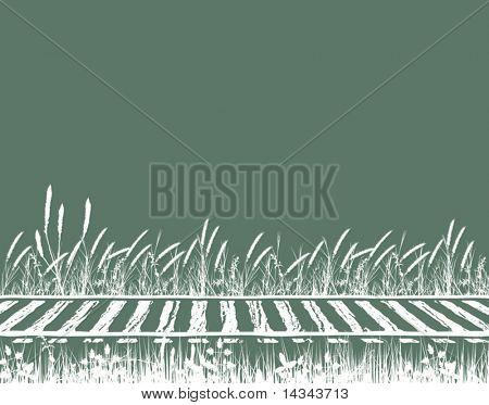 Editable vector illustration of grassy railway tracks