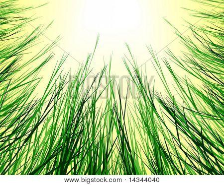 Editable vector design looking up through rough grass