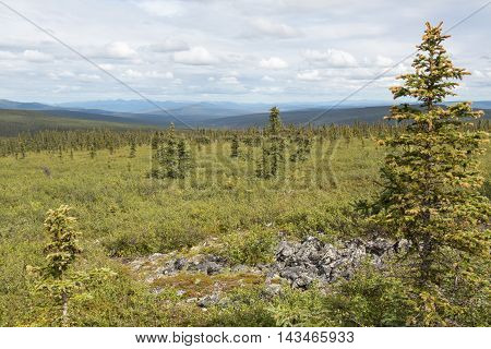 View of Alaska's White Mountains from Wickersham Dome