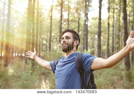Young Guy Welcoming The Pine Forest