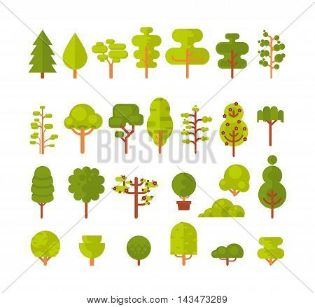 Stock vector illustration of a set of isolated trees and shrubs on a white background in a flat style