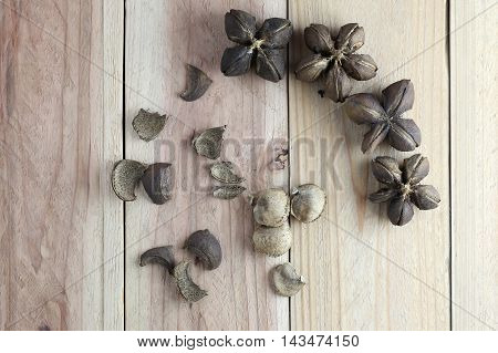 Legumes of Sacha inchi or Inca peanut on wood background for design concept of herbs.