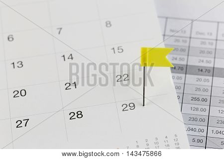 Yellow Pins to Wildcats on the calendar beside the Twenty-nine number of month in business concept.