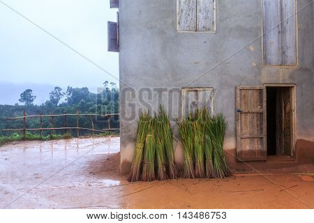 Reed Standing  Against The Outside Of A House In An African Mountain Village
