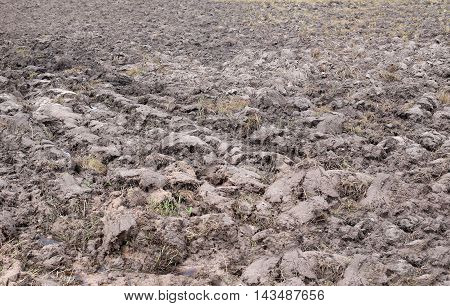 Agricultural land in rural areas and after plowing for rice plant.
