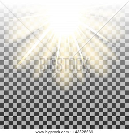 Sun rays or beams on transparent background. Vector illustration.