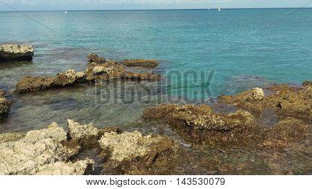 rocks reef in crystal clear sea island somewhere in cozumel