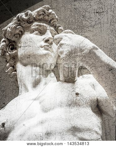 The statue of David by Michelangelo on the Piazza della Signoria in Florence Italy.