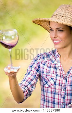 beautiful young woman with glass of wine, checking grapes quality