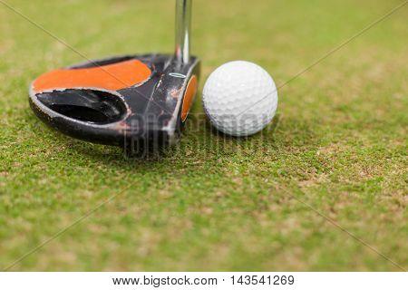 Closeup of a putter and golf ball