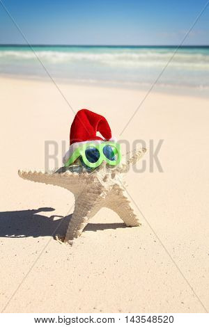 Starfish on a beach with a christmas hat and sunglasses