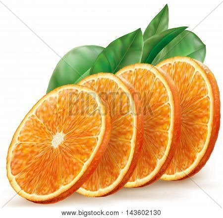 Vector illustration oranges fruits slices with leaves