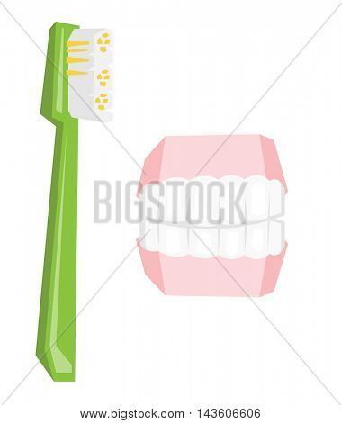Dental jaw model and toothbrush vector flat design illustration isolated on white background.