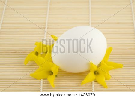 Egg And Flowers