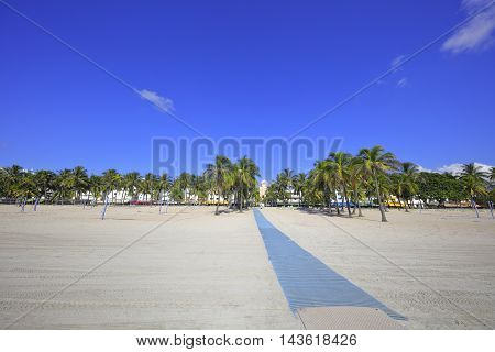 Walkway in Miami Beach USA with palm trees