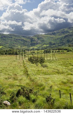view from a beautiful hiking route the kerry way in ireland of fence leading to trees and rocky mountains