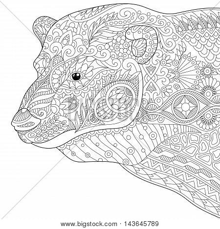 Stylized polar bear isolated on white background. Freehand sketch for adult anti stress coloring book page with doodle and zentangle elements.