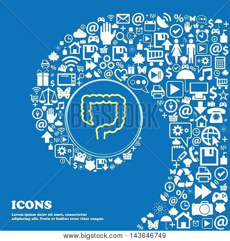 Large Intestine Symbols. Nice Set Of Beautiful Icons Twisted Spiral Into The Center Of One Large Ico