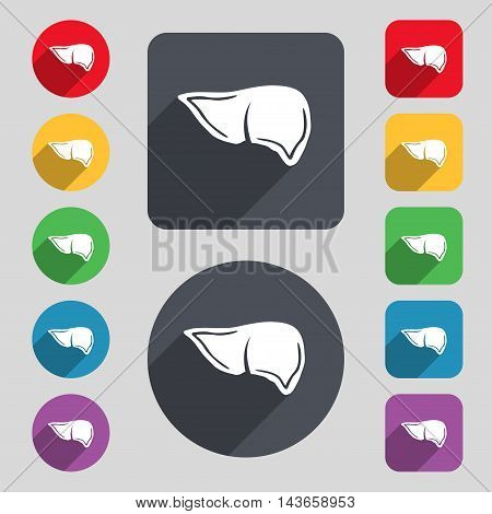 Liver Icon Sign. A Set Of 12 Colored Buttons And A Long Shadow. Flat Design. Vector
