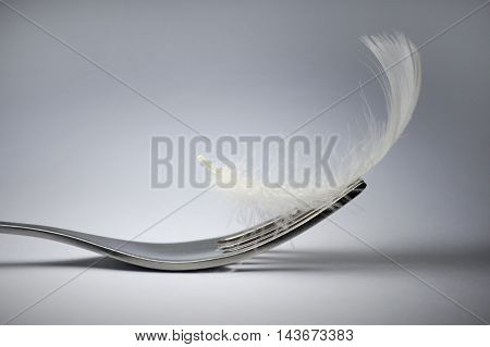 Conceptual image illustrating low-cal food. The fork and feather are brightly shined by spotlights in the dark.