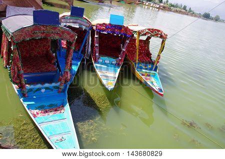Traditional shikaras in Srinagar in Kashmir, India