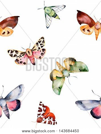 Butterflies and moths on white texture handpainted watercolor seamless background.