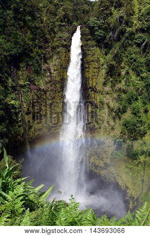 Rainbow at Akaka Falls on Big Island, Hawaii