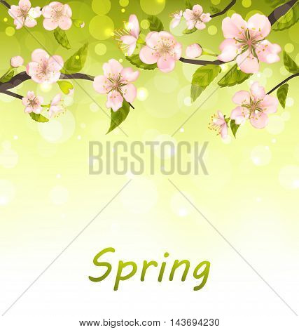 Illustration Cute Branches of Cherry Blossom Tree, Natural Background - Vector