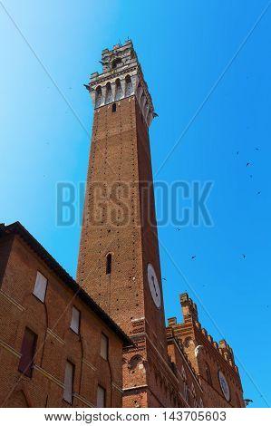 Torre Del Magnia In Siena, Italy