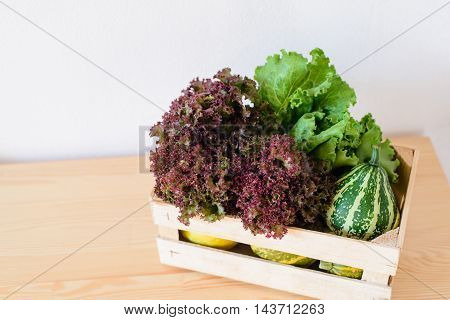 lettuce and decorative pumpkins in a box