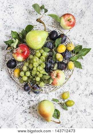 Assortment of fresh fruit - grapes pears apples plums on a light background top view
