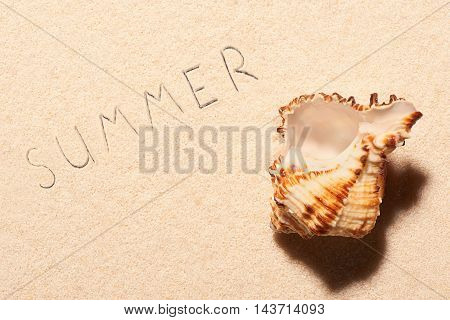 Empty Sea Shell And Summer Lettering Drawn On Sand
