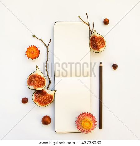 Bright autumn composition of a sketchbook figs chestnuts dry flowers and tree branches on white background. Flat lay top view