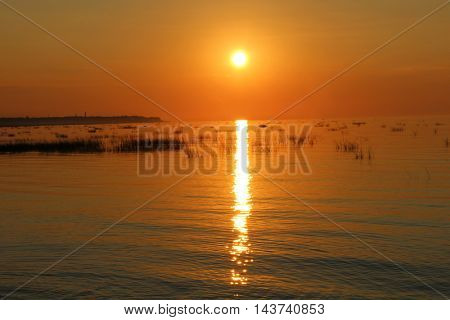 Sea shore during sunset