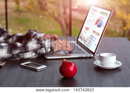 Person working on Computer Charts Telephone Coffee Mug on black wooden Table large Windows and green Garden View on Background, Focus on red Pomegranate